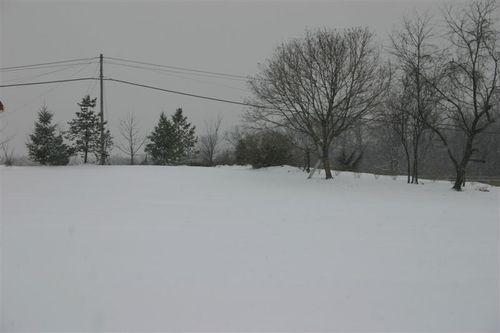 213_first_snow_004