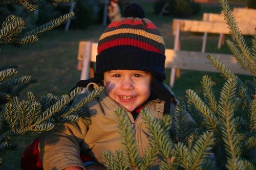 Picking_our_christmas_tree_017
